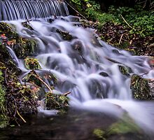 Waterfall at Russell Gardens by clare1981