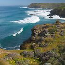 Coastal Landscape Phillip Island by johnrf