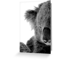 Koala Kuddles Greeting Card