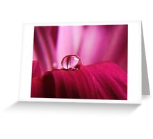 PINK Collection for the Cure - Pink reflections Greeting Card