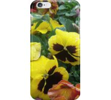 Floriade 2014 iPhone Case/Skin