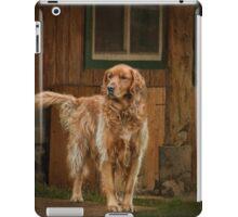 Bird Watcher iPad Case/Skin
