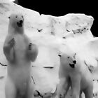 Polar bears at Cabela's store by Debra Willis