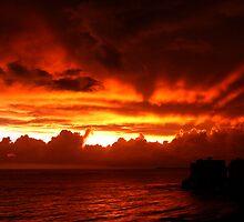 On Fire by Jarede Schmetterer