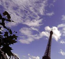 Eiffel Tower 1 by boldoflorine