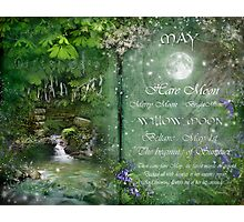 May - Willow Moon Photographic Print