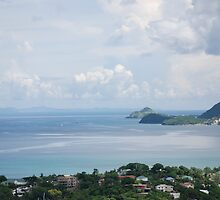 A VIEW OF MARTINIQUE by Carol Barona