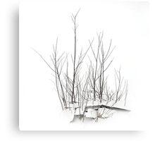 Some Snow Canvas Print