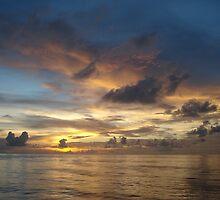 Southern Sky by Sean Boyce
