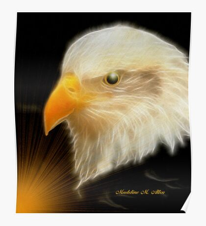 EAGLE WATCH Poster