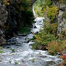 Stone Bridge by Anne Smyth