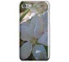 Soft Spring Blossum iPhone Case/Skin