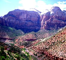 Zion National Park by Laurie Puglia