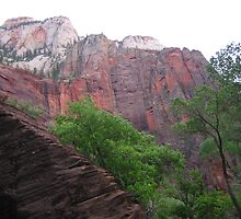 Another View of Zion National Park by Laurie Puglia