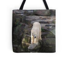 Polar Bear Rock (Berlin)  Tote Bag
