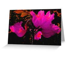 Wilting Hibiscus Greeting Card