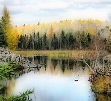 Autumn by Teresa Zieba