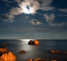 Moonlight Romance  by Steven  Siow