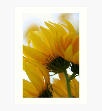 Blowing in the wind!!!  Art Print