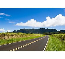 Puhi Back Roads Photographic Print