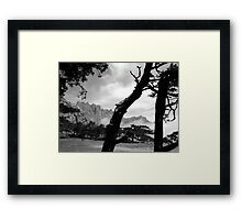 Pine Trees in the Corsican Mountains (France). Framed Print