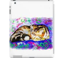 Pookie 2 The Magical Cat iPad Case/Skin