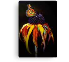 Autumn Monarch Canvas Print