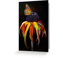 Autumn Monarch Greeting Card