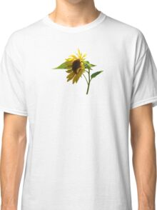 Backlit Sunflower Classic T-Shirt