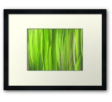 Grass - Light Framed Print
