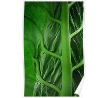 Chlorophyll Overload Poster