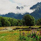 Hollyford Valley by Kyle  Jackson