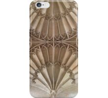 Double dandelion in stone iPhone Case/Skin