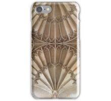 Double dandelion in stone iPhone Case/Skin