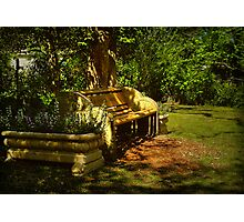 My resting place . . . Photographic Print