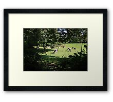 County Clare farm scene 3 Framed Print