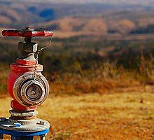 The Hydrant by K Futol