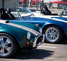 Cool Cobras by Jason Adams