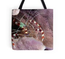 Banded Cleaners Tote Bag