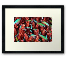 Blue/Green Community Framed Print