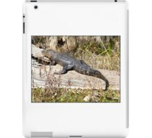 Gator in the Sun iPad Case/Skin