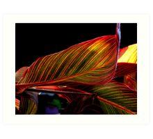 Canvas Leaf II Art Print