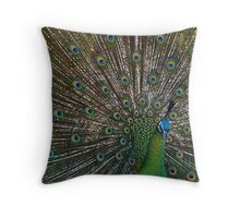 Peacock Splendor Throw Pillow