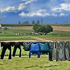 Wash Day In Amish Country by Dyle Warren