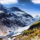 Bear Glacier by Dyle Warren