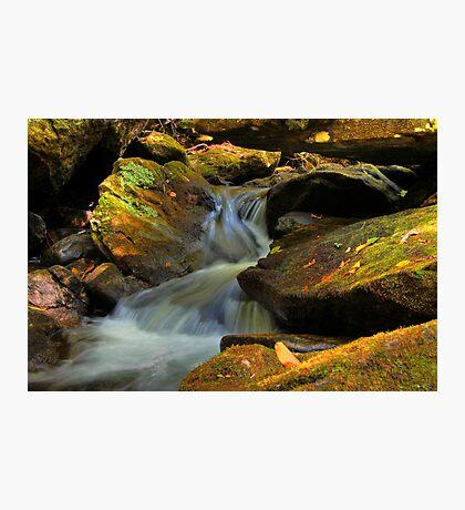Overflow Photographic Print