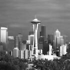 Seattle by lilac