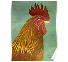 Rooster portrait Poster
