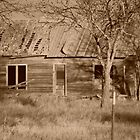 Old Abandoned House by Karen Keaton