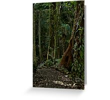 Puerto Rico Rain Forest Greeting Card
